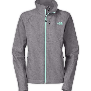 Free Shipping On Women's Apex Bionic Jacket | The North Face®