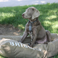 XL 38x50 Tough Dog Bed Duvet Cover : Choose from MANY canvas colors - Use four standard sleeping pillows as stuffing