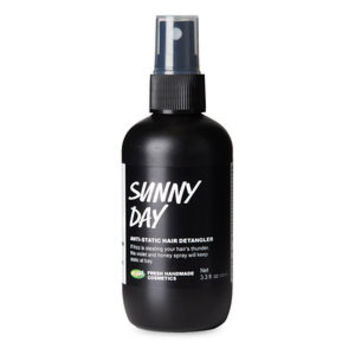 Sunny Day Hair Styling