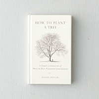 How to Plant a Tree