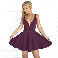 Raise A Toast Skater Dress in Plum