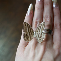 Stripped Butterfly Sterling Silver Ring