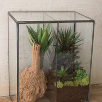 Large Slanted Top Glass And Metal Terrarium With Divider