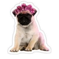 Hipster Pug Puppy by SuperFluff