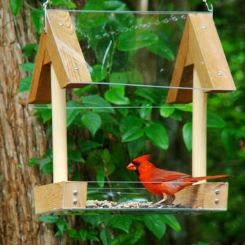 Hanging wood bird feeder platform style has open fly through design, clear food tray / roof - attracts cardinals, bluebirds, and many others
