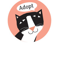 Adopt Cat bumper sticker choose black or gray cat