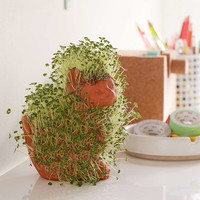 Cuddly Kitten Chia Pet - Urban Outfitters