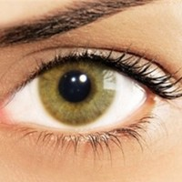 Solotica HIDROCOR Avelâ (Hazelnut) by Solótica USA | North America | FREE Shipping in US | Color Contact Lenses