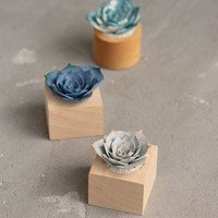 Only one Pink Succulent Fairy Garden in Wood Cup Ideas Fake Succulent Home House Decor Decoration Modern Minimalist Housewarming