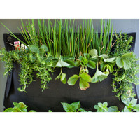 Wally One Indoor+Outdoor Living Wall - A+R Store