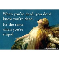 When You're Dead You Don't Know You're Dead It's The Same When You're Stupid Rectangular Magnet