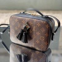 Louis Vuitton Lv Bag #675