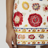 Troubadour Embroidered Pelmet Skirt - Topshop