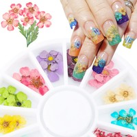 24PCS/Wheel 3D Nail Art Decoration Dried Flower 3D Manicure Polish