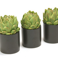 Green Artichokes in Black Circle Pot S/3