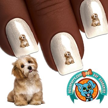Havanese Say What - Nail Art (NOW 50% MORE FREE)