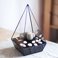 "glass terrarium ""pyramid"""