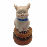 Children's Jewelry Boxes Pig