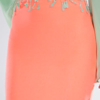 Kiss And Tell Skirt: Neon Coral