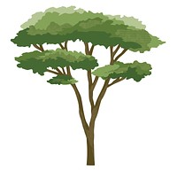 Small Acacia Tree Decal, Safari Nursery Decals, Repositionable Fabric Decals