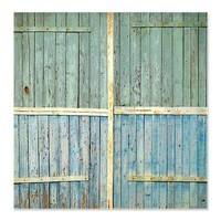 Rustic Old Wood Doors Shower Curtain> Coastal, Vintage and Urban Chic Shower Curtains> Rebecca Korpita Coastal Design