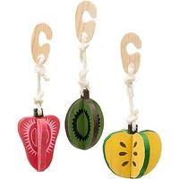 Petco Wooden Fruit Small Animal Chews