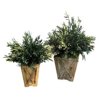 Eucalyptus Reclaimed Wood Town & Country Planters (Set of 2)