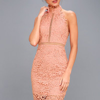 Divine Destiny Blush Pink Lace Midi Dress