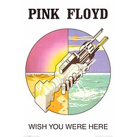 Pink Floyd Wish You Were Here Logo Poster 24x36
