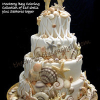 Beachcomber 115 white chocolate seashells for your wedding cake a collection of 115 seashells