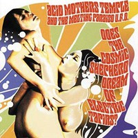 Acid Mothers Temple - Does the Cosmic Shepherd Dream of Electric Tapirs?