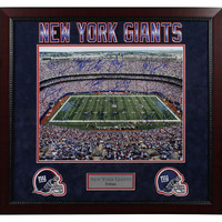 NY Giants Greats Multi Signed Stadium Shot 16x20 Photo (18 Sig) Elite Framed