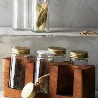 Acacia Spice Rack by Anthropologie in Chocolate Size: One Size Kitchen