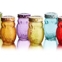 Owl Jars w/Lid, Set of 6, Kitchen Canisters, Canning & Spice Jars