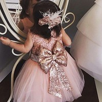 Baby & Young Girls Kids Wedding Flower Girl Dress Princess Party Pageant Formal Dress Back Bow Sleeveless Lace Tulle Dress 0-10Y