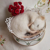 Sleeping needle felted white mouse in a vintage china sugar bowl