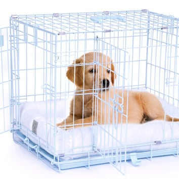 Precision Pet ProValu Pet Crate II