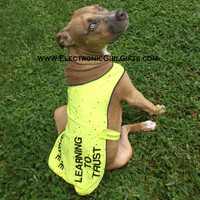 Custom Yellow Dog Jacket - unique, customized, gift for pets, dog, puppy, personalized, rescue, trainning