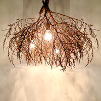 Classic Native Tumbleweed Chandelier