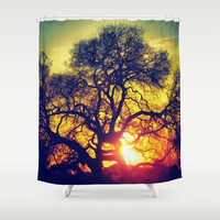 Through the trees Shower Curtain by DuckyB (Brandi)