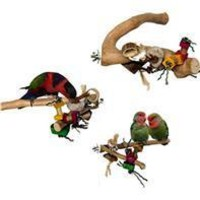 A&e Cage Company - Java Wood Branch Bird Toy