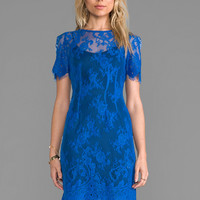 WHITE SUEDE Evette Lace Dress in Cobalt