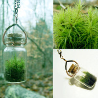 Terrarium Necklace by FrolicInTheForest on Etsy