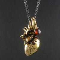 """Anatomical Heart Necklace 24 Karat Gold Plated Heart Pendant with 14 Karat Gold Filled Wire Wrapped Garnet On 24"""" Gunmetal Chain"""