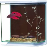 Marina Betta Kit Contemporary Theme, Large