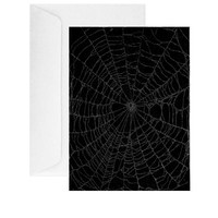 Preserved Spider Web Note Card Orchid Spider Handmade