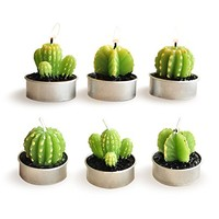 Ornerx Cactus Candles for Home Decor Set of 6