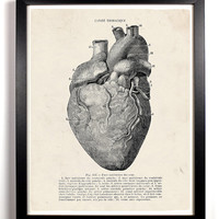 The Human Heart Anatomy Antique Illustration  8 x 10 Giclee Art Print Upcled Collage Recycled Book Art Buy 2 Get 1 FREE