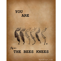"""Insect Print, Art Illustration,Wall Decor, Home and Living, You Are The Bee's Knees, 8 x 10"""""""
