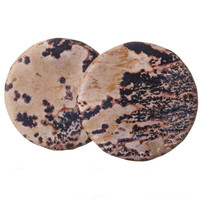 Petrified Wood Jasper Stone Plugs (3mm-51mm) XL